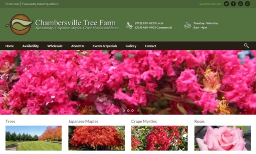 Chambersville Tree Farm